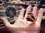 5 Consultations